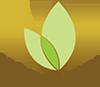 Clínica Vita Logo